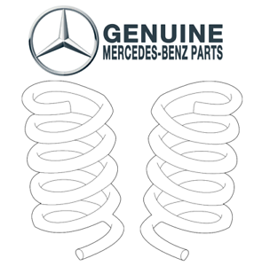 For Mercedes W210 E320 4Matic 3.2L V6 Pair Set of 2 Front Coil Springs Genuine