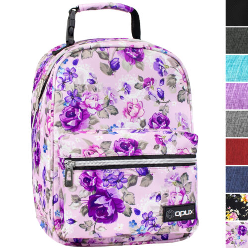 Insulated Lunch Bag Backpack Thermal Bento Cooler Tote for Kids Boys Girls Adult