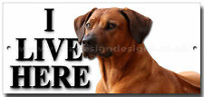 "RHODESIAN RIDGEBACK ""I LIVE HERE"" METAL SIGN,DOG BREEDS,WARNING,SECURITY SIGN."