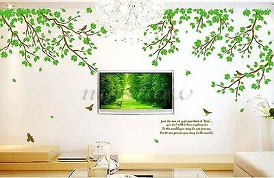 Removable Large Tree Birds Leaves Quote Wall Sticker Vinyl Art Decals Room Decor