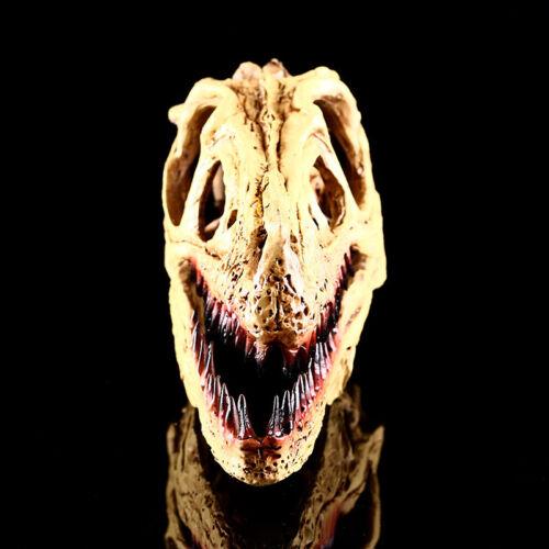 TRICERATOPO del Tirannosauro Rex Cranio Decorazione modello dinosauro Figura Giocattolo Da Collezione