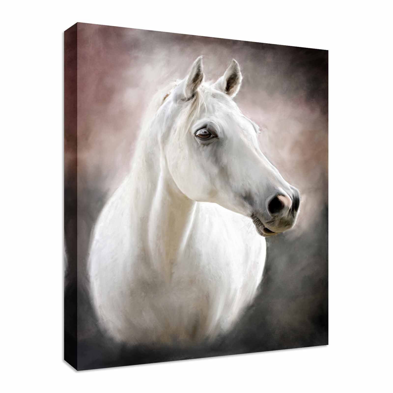 Painting portrait of a Weiß horse Canvas Art Cheap Wall Print Home Interior
