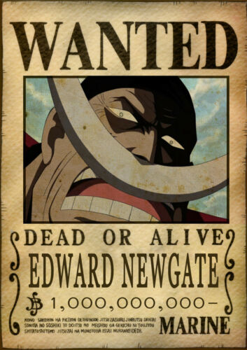 1 FREE//1 GRATUIT *MANGA ONE PIECE WANTED BARBE B.W POSTER A4 PLASTIFIE-LAMINATED