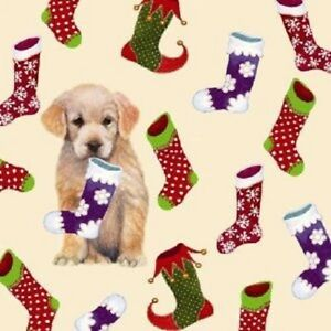 Christmas-Stockings-Cute-Golden-Retriever-Puppy-Dog-10-pack-small-square-cards