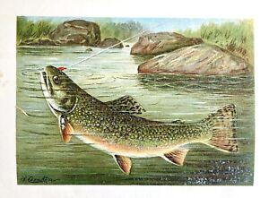 1887-Goode-AMERICAN-GAME-amp-FOOD-FISH-w-RARE-DENTON-FISH-Chromo-1st-HB-496pp-NICE