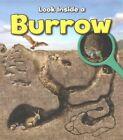 A Burrow by Richard Spilsbury (Paperback, 2014)