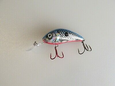 Lot #6 Salmo Rattlin/' Hornet 4.5 Crankbait Hard To Find Color New Out Of Package