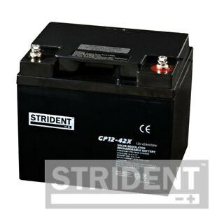 Pair of Strident 42ah 12v Batteries, for Pride Colt Pursuit and Van Os DX8