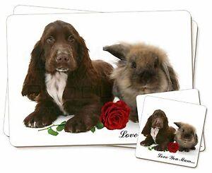 Spaniel-CONEJO-Rosa-039-Love-You-Mum-039-Individual-2x-Manteles-2x-Posavasos-S