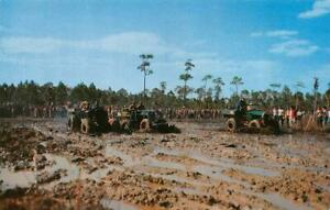 NAPLES-FL-Florida-SWAMP-BUGGY-DAY-RACING-Mud-Bogs-ROADSIDE-c1950-039-s-Postcard