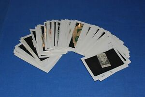 Exposition-Poster-Stamps-European-1880-1900-Hundreds-BlueLakeStamps-Nice