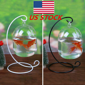 US-Clear-Hanging-Glass-Aquarium-Fish-Bowl-Fish-Tank-Flower-Plant-Vase-Home-Decor