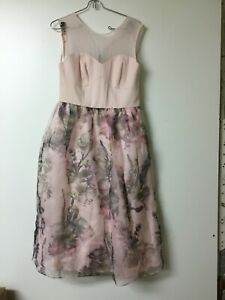 37115a8ab Ted Baker  Faunia  Torchlit Floral Ballet Dress Pink US 8  SZ 3 in ...