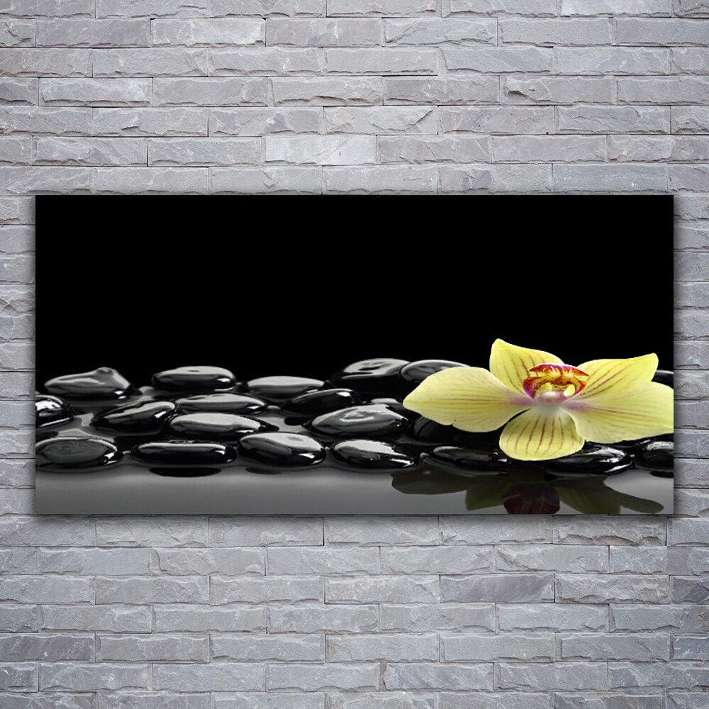 Glasbilder Wandbild Druck auf Glas 120x60 Blaume Steine Küche