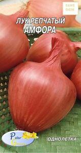 graines d'oignons Amphora - Potager Légumes Plantes - 250 graines - France - État : Neuf: Objet neuf et intact, n'ayant jamais servi, non ouvert, vendu dans son emballage d'origine (lorsqu'il y en a un). L'emballage doit tre le mme que celui de l'objet vendu en magasin, sauf si l'objet a été emballé par le fabricant d - France
