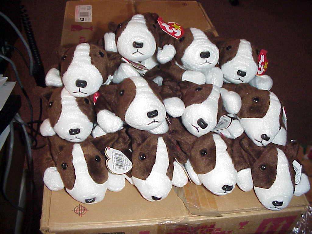 (1) DOZEN RETIRED TY BRUNO the DOG BEANIESBIRTHDAY BEANIESBIRTHDAY BEANIESBIRTHDAY SEPT 9,199712 CT MWMT b81ccc