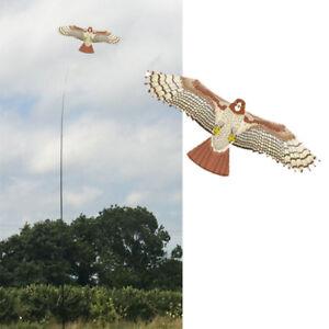 Kits de cerf-volant Hawk.   Les scarificateurs à oiseaux protègent les cultures des agriculteurs.   Avec une ligne gratuite