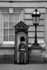 Beefeater-at-Station-Buckingham-Palace-London-England-BW-Matte-Print-8-034-x12-034