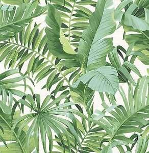 Fd24136 Solstice Tropical Feuille Verte Fine Decor Papier Peint Ebay