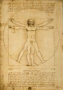 AZ24-Vintage-Leonardo-da-Vinci-039-s-Vitruvian-Man-Re-Print-A2-A3-A4