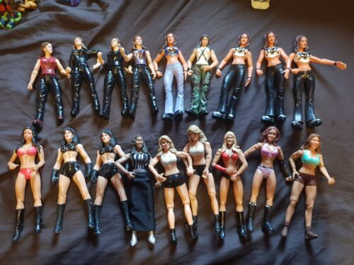 WWE Jakks Figures Divas Women Wrestlers WWF Make Your Selection