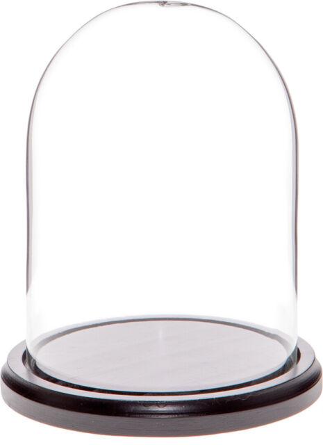 "Plymor Brand 4.5/"" x 6/"" Glass Display Dome Cloche no Base"