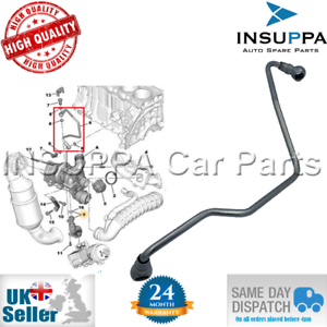 Turbo Oil Feed Pipe For Peugeot 207 208 308 508 3008 5008 Rcz 1 6 16v 9824001880 Ebay