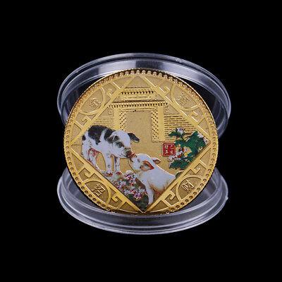 2019 Pig Commemorative Coin Chinese Zodiac Anniversary Coin Souvenir MedalFDCA