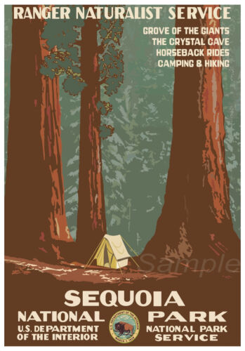 VINTAGE SEQUOIA NATIONAL PARK CAMPING TRAVEL A2 POSTER PRINT