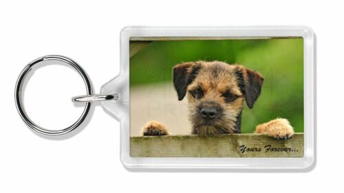 """AD-BT5yK Border Terrier Puppy Dog /""""Yours Forever.../"""" Photo Keyring Animal Gift"""