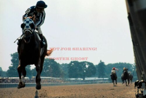 24 inch by 36 inch SECRETARIAT Poster 4 Triple Crown Horse Photo Poster