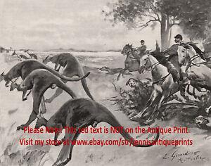 Marsupial Kangaroo Hunting in Australia, 1890s Antique Print & Article