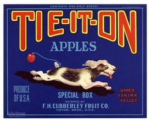 Tieton Tie-It-On Terrier Puppy Dog Pear Fruit Crate Label Art Print