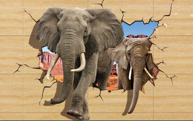 3D Afrikanischer Elefant 4 Fototapeten Wandbild Fototapete BildTapete Familie DE