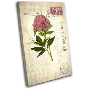 Image Is Loading Pink Flower Vintage Shabby Chic Floral SINGLE CANVAS