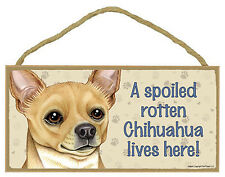"""Spoiled Rotten Chihuahua Tan Lives Here Sign Plaque 10"""" x 5"""" Dog Pet Gift"""