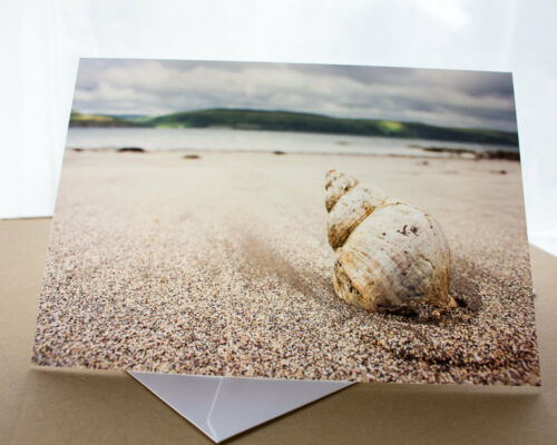 Lady Bay Dumfries /& Galloway Seaside Photo Greetings Card Shell on a Beach