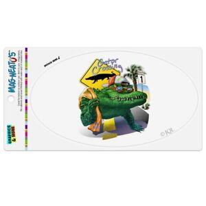 Alligator-Gator-Crossing-Sunglasses-Vacation-Car-Euro-Oval-Magnet