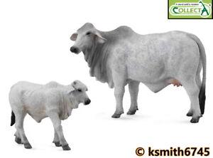 Collecta Brahman Vache & Veau solide Jouet en plastique Ferme Pet Animal Sauvage Zoo * nouveau