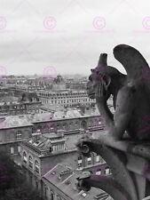 ART PRINT POSTER PHOTO CITYSCAPE PARIS FRANCE GARGOYLE GROTESQUE LFMP0476