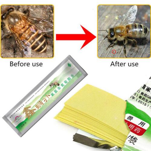 20pcs Streifen Fluvalinate Streifen Bee Milbe Varroa Mörder Bienenzucht Medizin