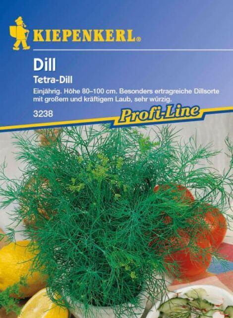 Kiepenkerl - Dill *Tetra Dill* 3238 besonders ertragreiche Dillsorte sehr würzig