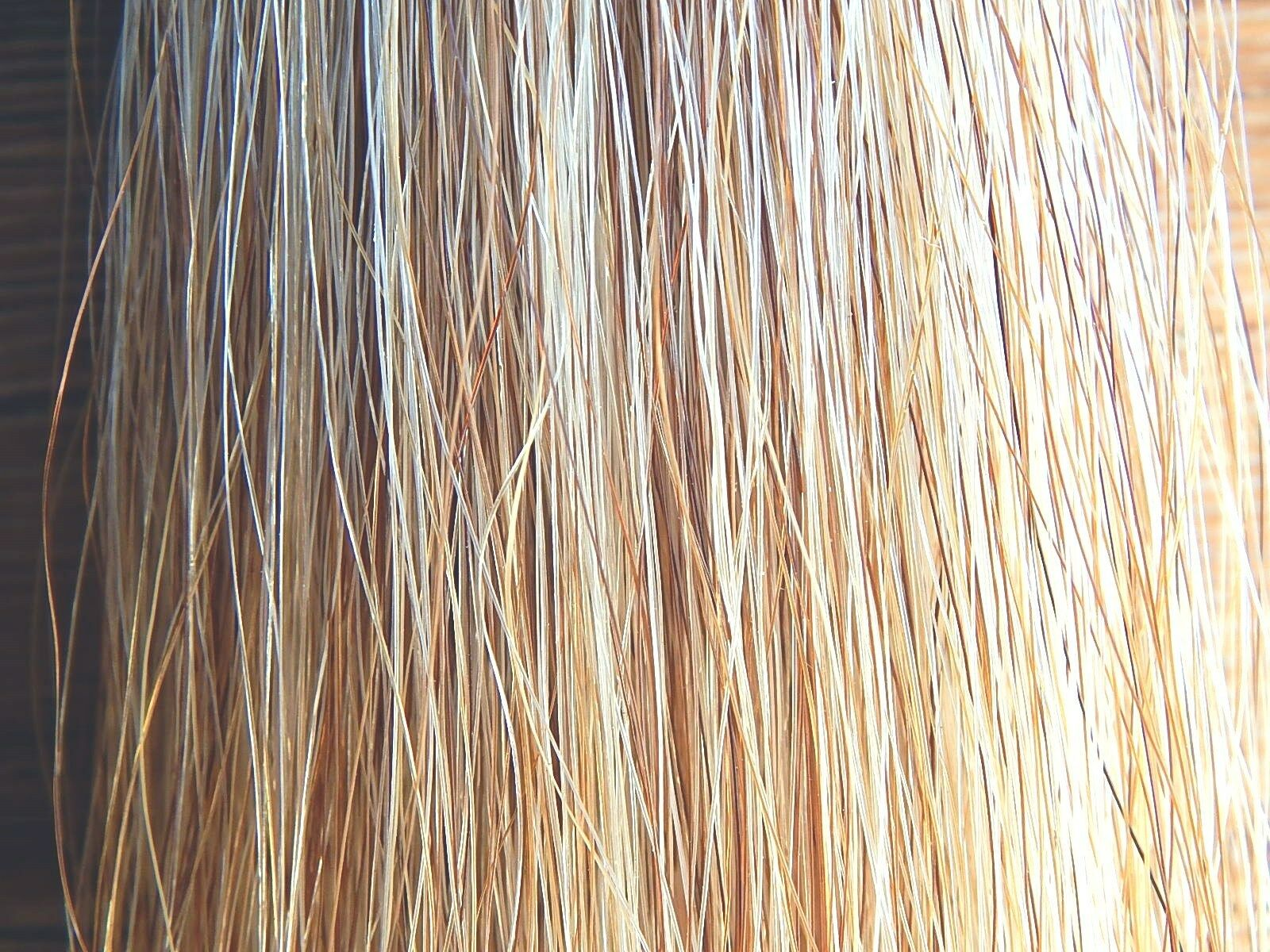 American Made  Light Flaxen 1lb KATHYS TAIL Extension Can Can Extension be weighted  Free Ship 348c4e