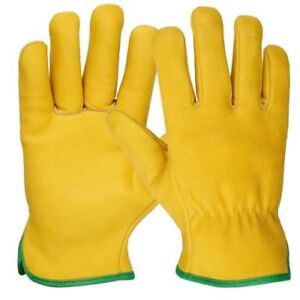 Pack Of 10 Click Fleece Lined Soft Leather Drivers Gloves Qldg