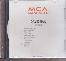 David nail I'm a fire cd promo