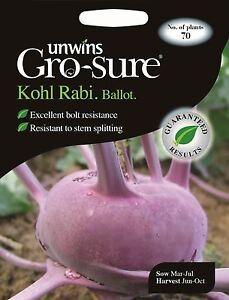 UNWINS paquet illustré-Kohl Rabi scrutin F1-70 graines