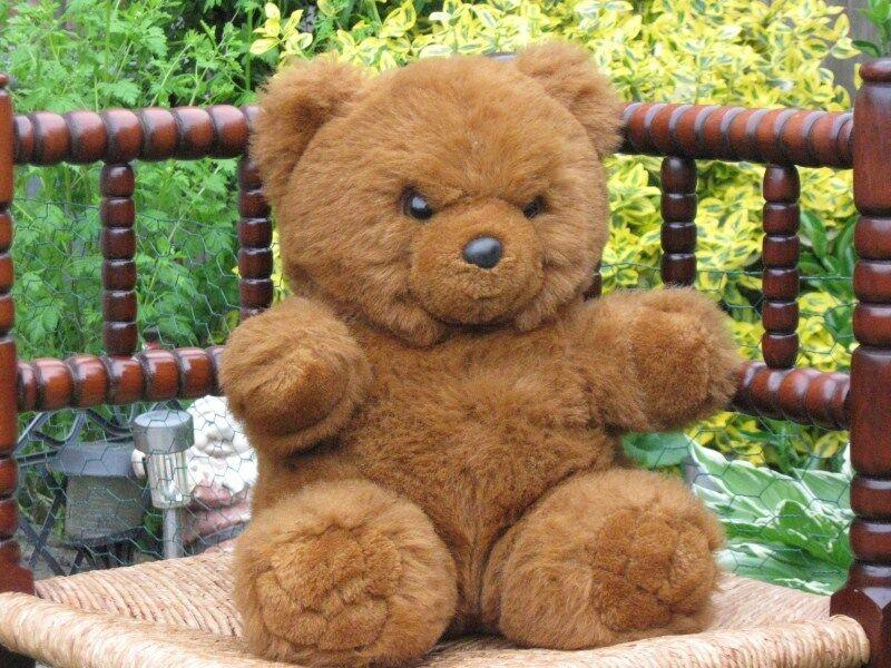 Rosso marrone Sitting Teddy Bear Plush Oetker Vernel Holland
