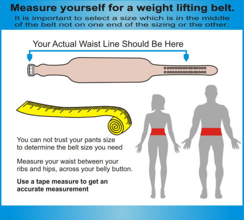 """for Weight Lifter,Gym Power Belt  4/"""" All Around Weight Lifting  Leather Belt"""