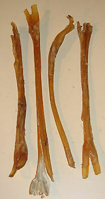 RED STAG SINEW 4 pieces per pack, ideal for backing bows etc