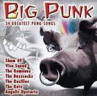 Big Punk von Various Artists (2013)